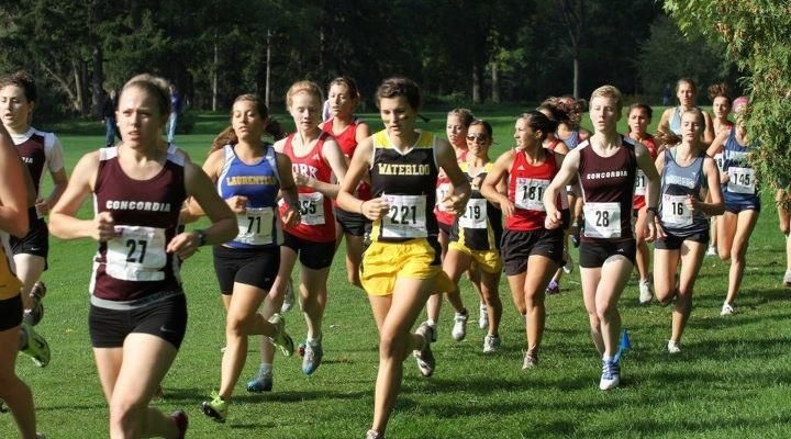 Western International: Concordia highlights and results