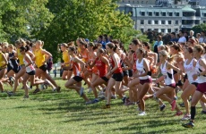 CIS XC Report Week 1