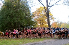 CIS XC Report Week 5